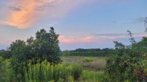 Sunset over field in Beamsville